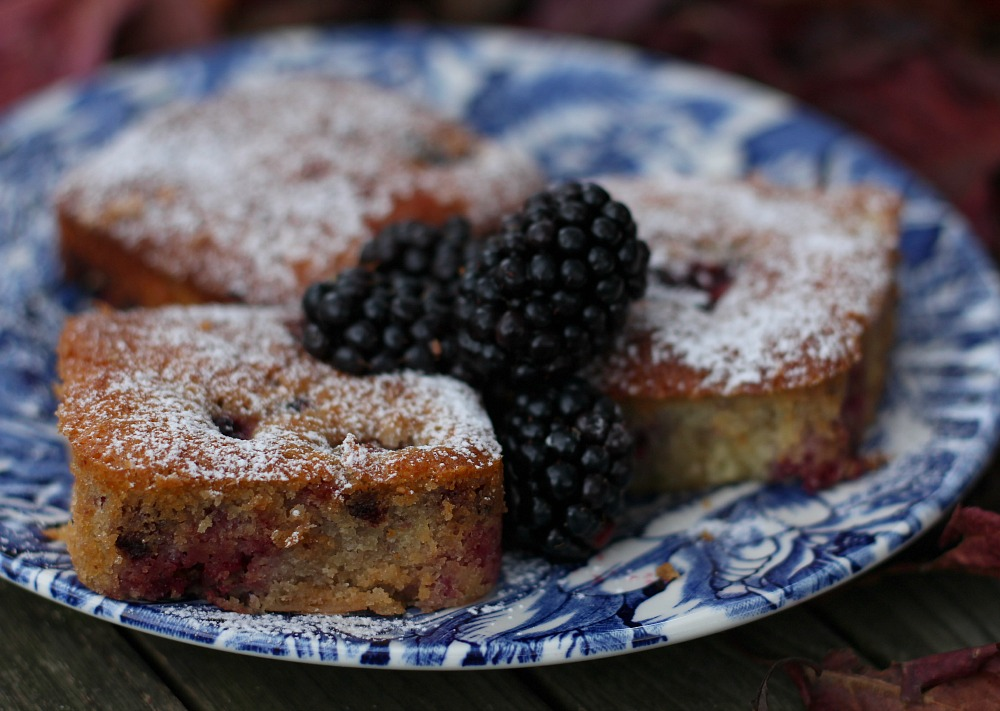 Warm Blackberry Squares